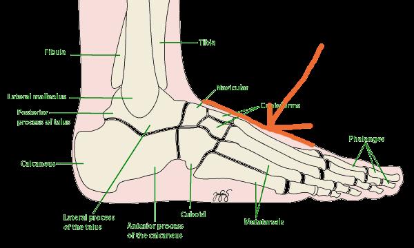 kaki_sakit