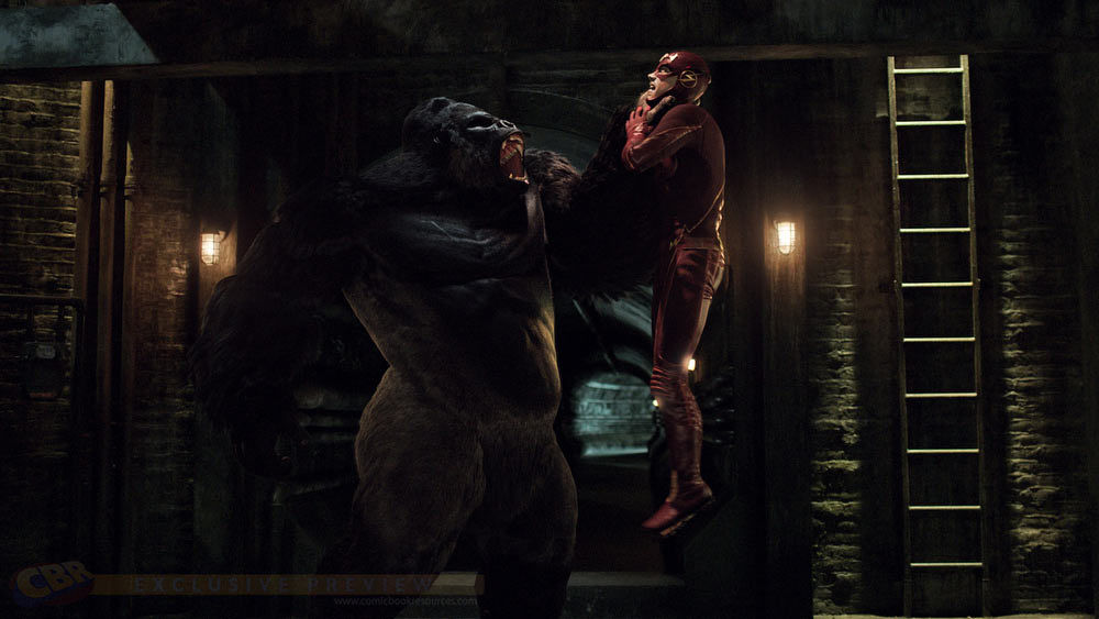 the-flash-gorilla-grodd-reverse-flash-captain-cold-and-more-the-cw-378873